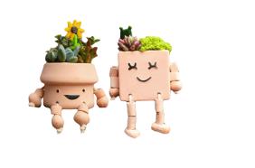 Funny Flowerpots