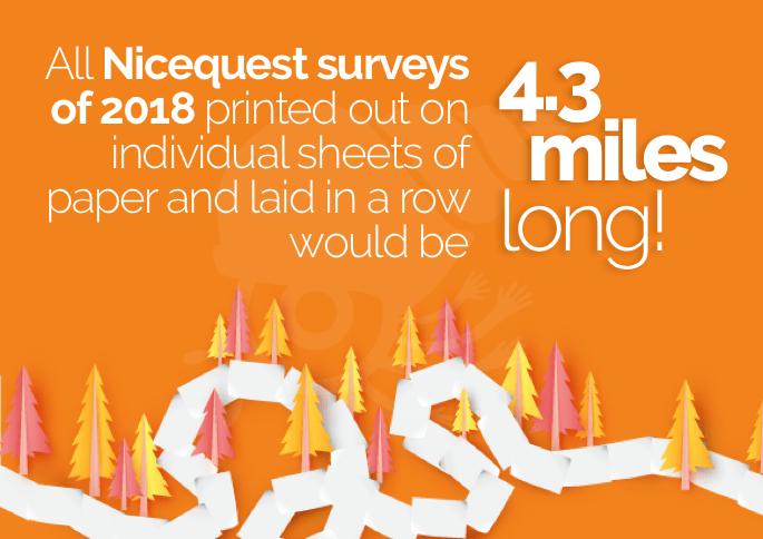 Nicequest surveys 2018