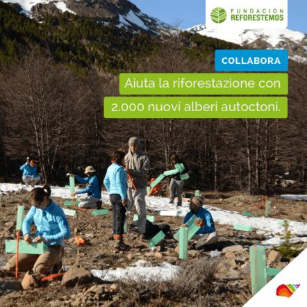 La riforestazione della Patagonia è stato uno degli ultimi progetti di solidarietà che abbiamo promosso.