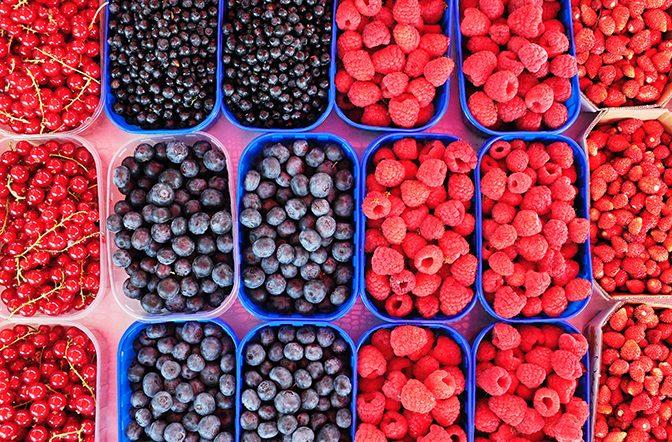 Los 5 mejores alimentos para nutrir el cerebro
