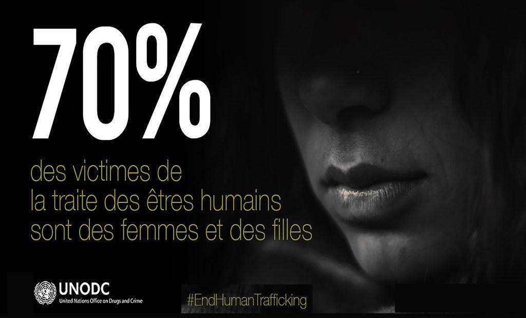 Source : Office des Nations unies contre la drogue et le crime
