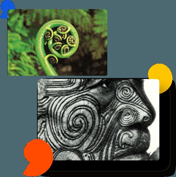 O Koru é um símbolo da cultura Maori.